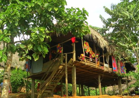 Embera Village Tours : Indian Hut