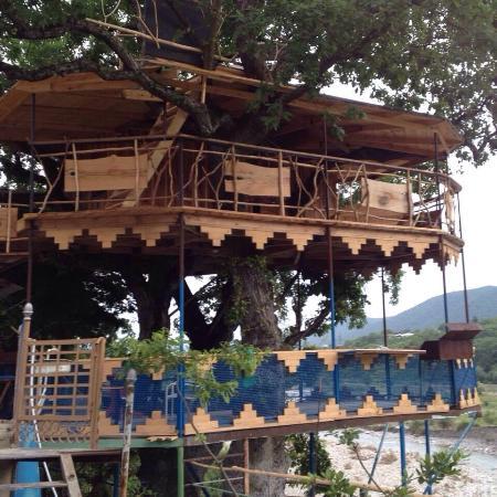 tree house in georgia - Picture of Annunaki 444, Dusheti - TripAdvisor
