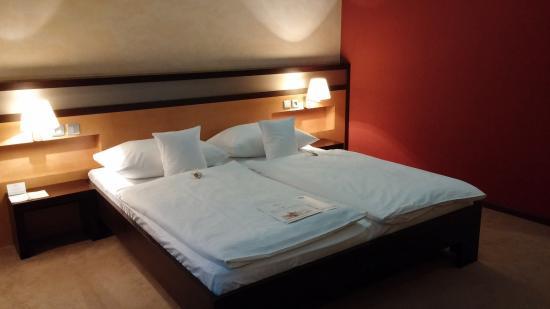 Hotel Dubna Skala: Double room