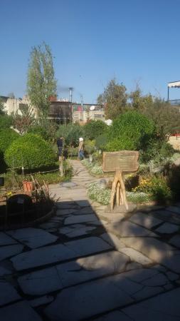The Environmental Garden