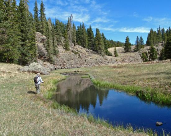 Velarde, Nuevo Mexico: Sping Fishing on the Valles Caldera