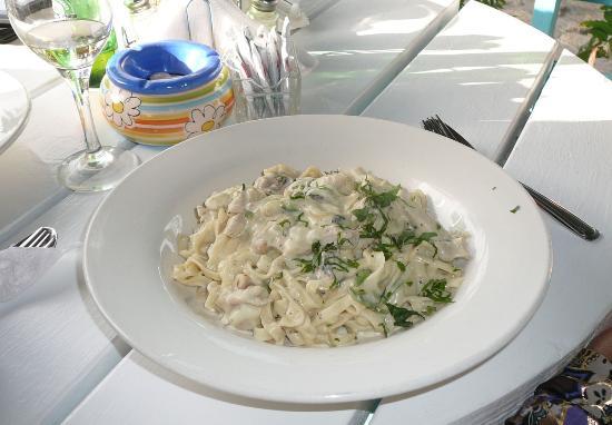 Mama's Fresh Homemade Pasta : PASTA!!!!
