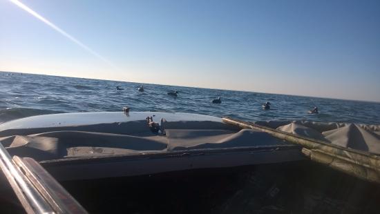 Tilghman, MD: Sea Duck Hunting