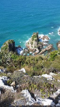 Nugget Point: 20151227_160730_large.jpg