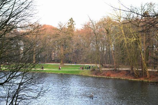 Foto Bois de la Cambre and Foret de Soignes