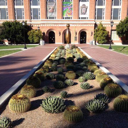 University of Arizona : Entrée du musée