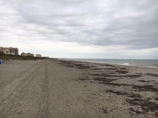 Playa De Cocoa Beach