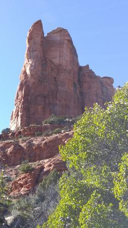 Teacup Trail