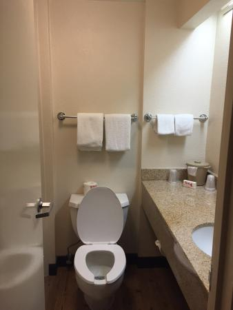 Red Roof Inn El Paso East: Moldy Bathroom