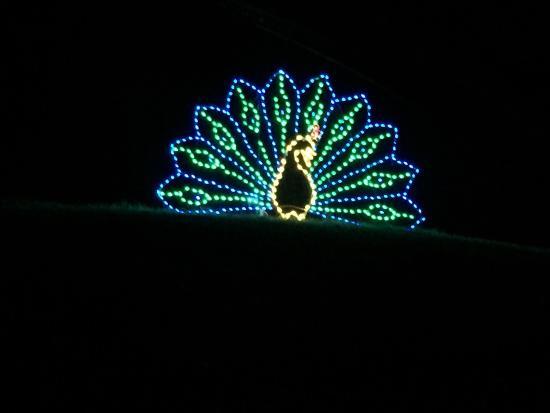 Tanglewood Park: photo3.jpg