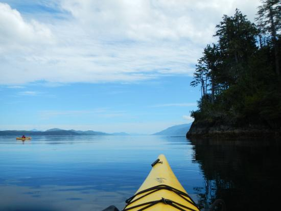 Telegraph Cove, Καναδάς: Glassy water, a gorgeous day to be out kayaking