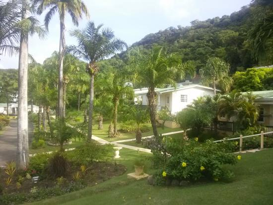 Blue Horizons Garden Resort: Resort grounds and cottages