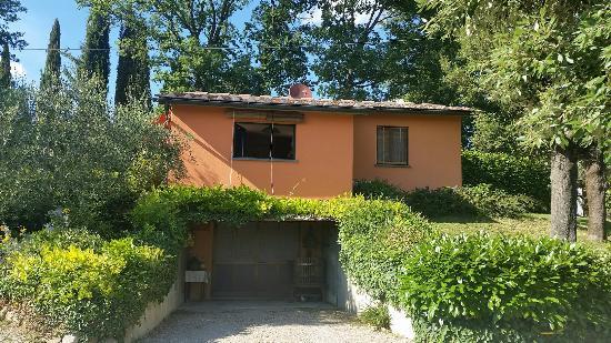 Villa Il Borraccio: 2015-12-28 21_large.jpg