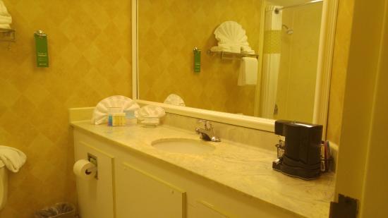 Hampton Inn Atlanta Southlake: Bathroom