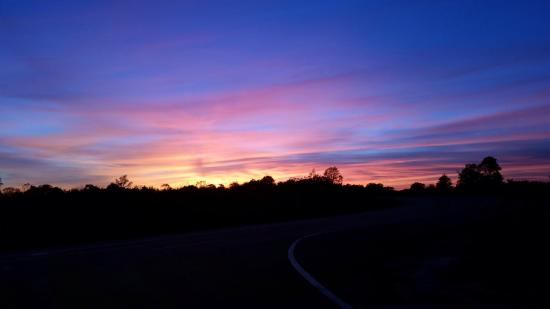 Savanna, IL: Mississippi Palisades State Park