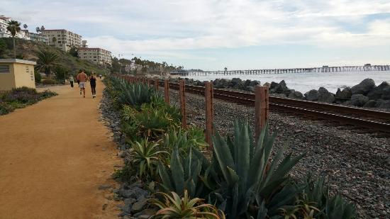 Beautiful seaside trail extending north and south of the San Clemente Pier.  Great place for a h
