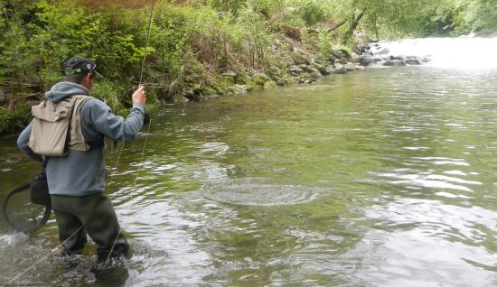 Gilles Bastos Fly Fishing Guide