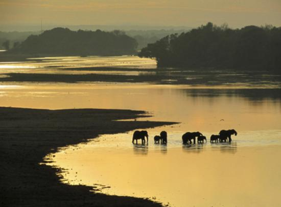 Chiredzi, ซิมบับเว: The sunrise view of the Save River from our room