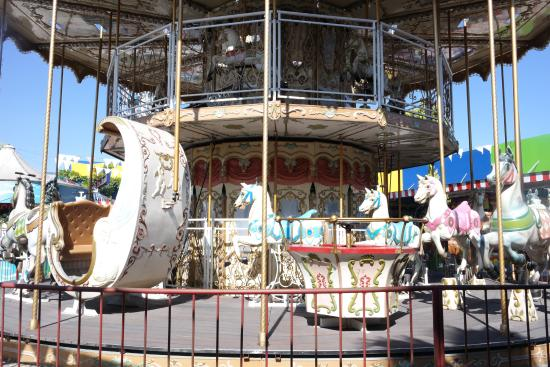 it s never too old for a carousel ride picture of suroboyo