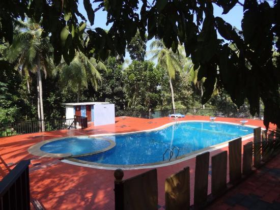 Pool Picture Of Eco Garden Resort Cheruthuruthi Tripadvisor