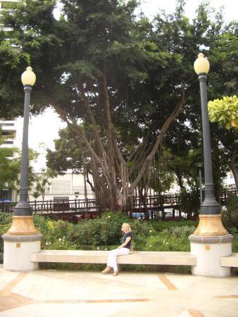 Botanical Garden of Guayaquil: Можно присесть на скамейку