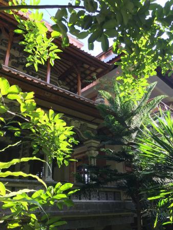 沙尼亞之家別墅照片