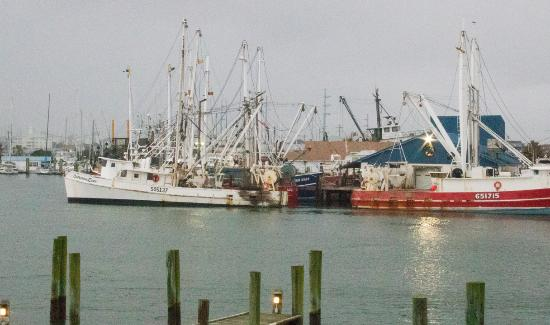 Beaufort Inn: Shrimp Boats (View from our room)