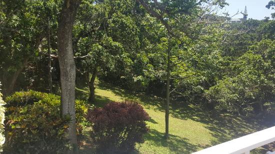 Southbroom, África do Sul: 20151218_123703_large.jpg