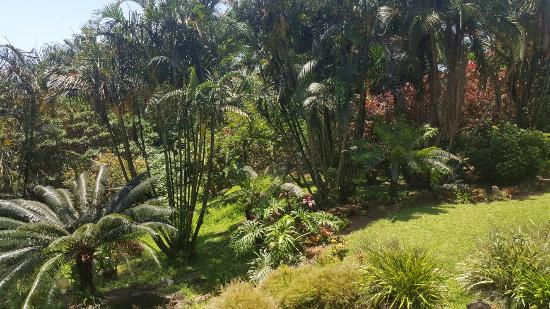Southbroom, África do Sul: 20151218_123754_large.jpg