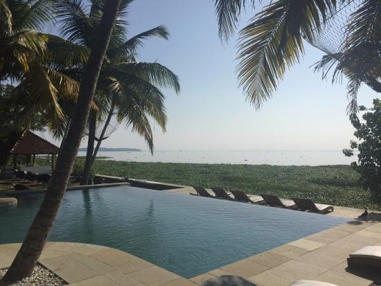 Purity at Lake Vembanad: Lovely pool