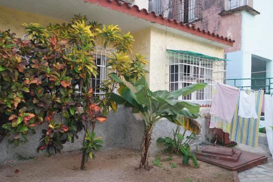 Casa Mariana: Entrada Principal/Jardin