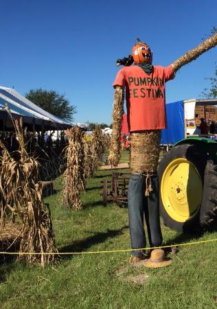 Hunsader Farms: The pumpkin festival