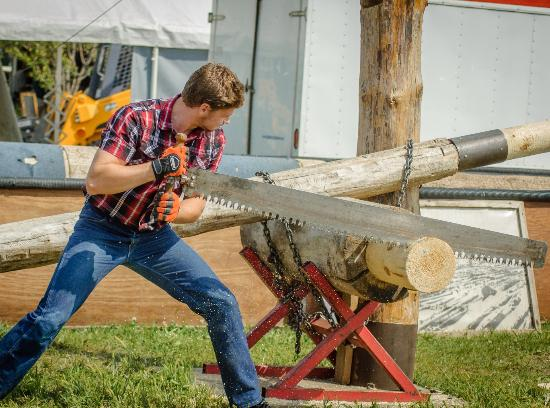 Owatonna, MN: Lumberjack Show at Steele County Free Fair