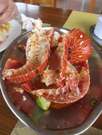 Birdwatchers: Lobster after I had eaten it.