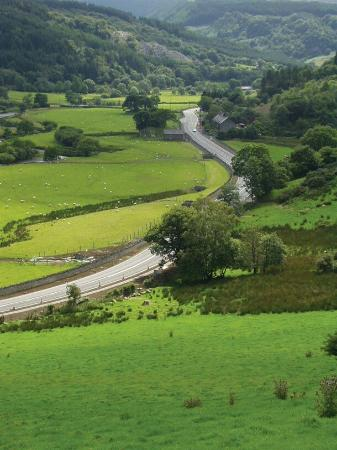 A470: WH May 2010 (219)_large.jpg