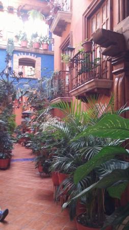 Hotel Rincon de Josefa: 20151228_093849_large.jpg