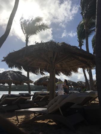 Le Guanahani: photo1.jpg