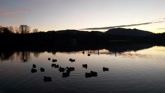 Lac Staffelsee