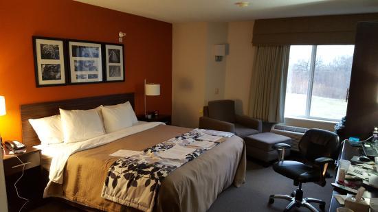 Sleep Inn Suites Danville Basic King Room