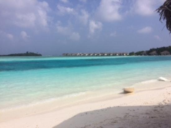 arrival pier picture of cinnamon dhonveli maldives. Black Bedroom Furniture Sets. Home Design Ideas