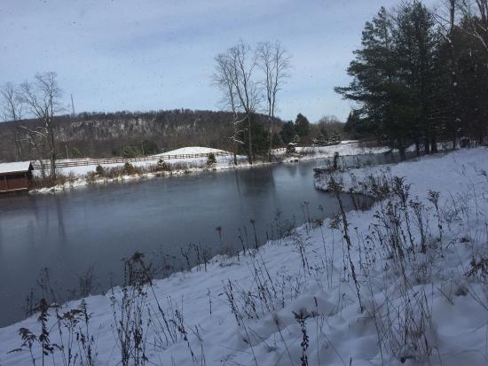 Spring Creek, Pennsylvanie : photo5.jpg