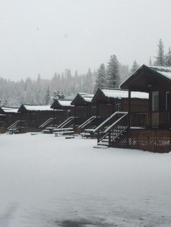 Yosemite Lakes RV Resort: Cabins