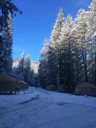 Yosemite Lakes RV Resort: river yurts