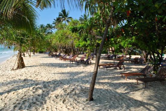 Neptune Pwani Beach Resort Spa Liegeplätze