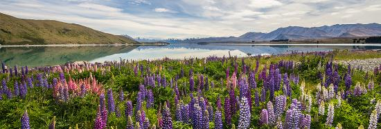 Lake Tekapo Village Motel: Beautiful Lake Tekapo