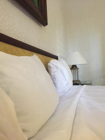 Gran Hotel Hacienda De La Noria: photo2.jpg