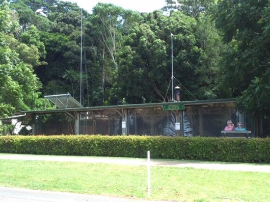 Mary Cairncross Cafe: Cafe gardens