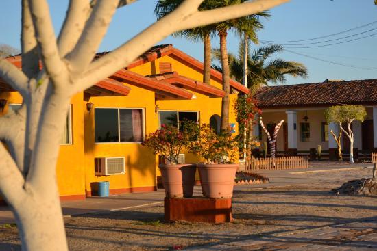 Las Palmas Hotel: Walk around the grounds of Las Palmas, visit the gym and swiming pool
