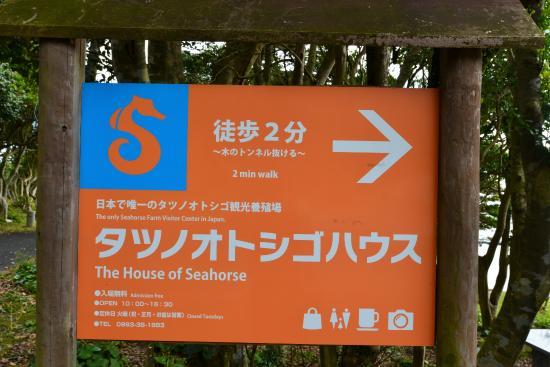 Seahorse House: 案内板