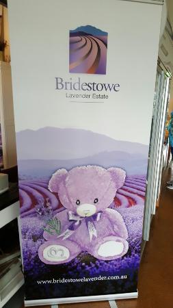 Tasmanien, Australien: Bridestowe Estate